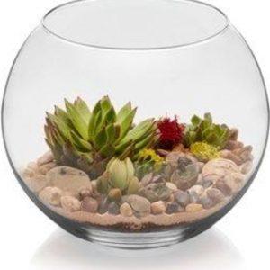 """16"""" Bubble bowl"""