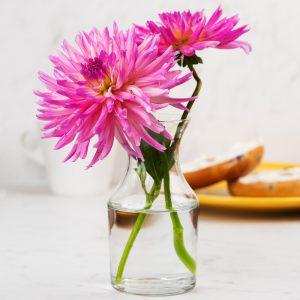 8.5 oz. Glass Cocktail Decanter or Bud Vase