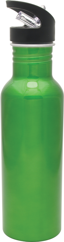 16 oz Hiker Bottle Green