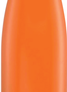 17 oz Adela Series orange